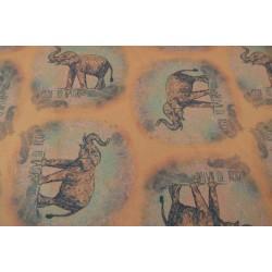 Elephant Elinor