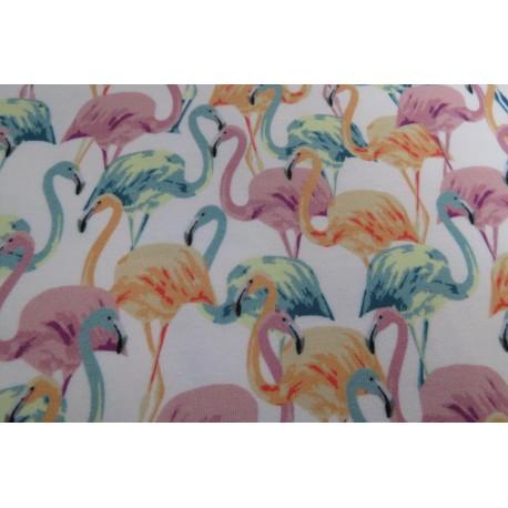 Modal Flamingo