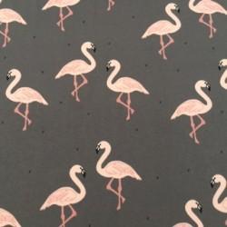 Flocking Flamingos